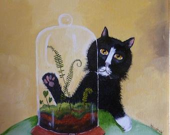 Terrarium Cat