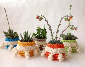 Korb Für Kaktus Etsy
