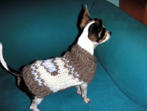 Organic Wool Chihuahua Coat By Nerina52 Small Dog Sweater Etsy