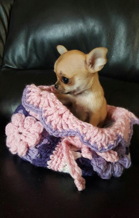 Schlafsack Für Welpen Chihuahua Betten Von Nerina52 Häkeln Etsy