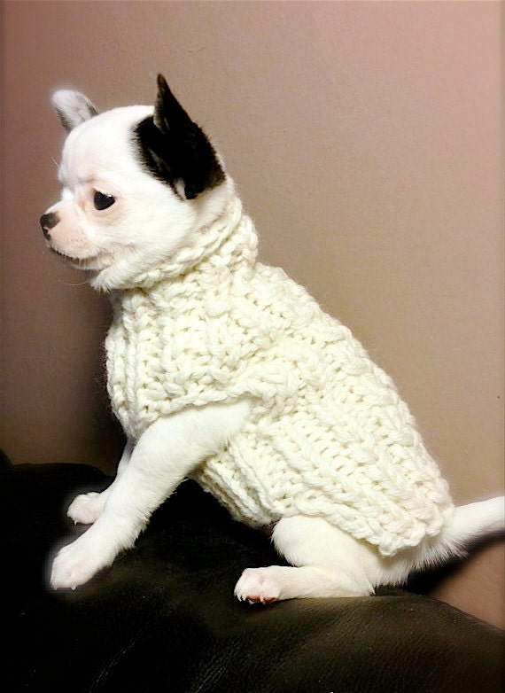 White Milk puppy chihuahua sweater Knit Chihuahua sweater Small dog clothes  Gift for pets Chihuahua coat Pets clothing fashion