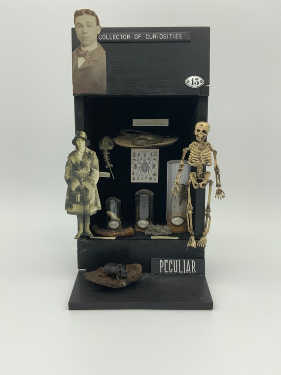 Collector of Curiosities, altered cigar box assemblage art
