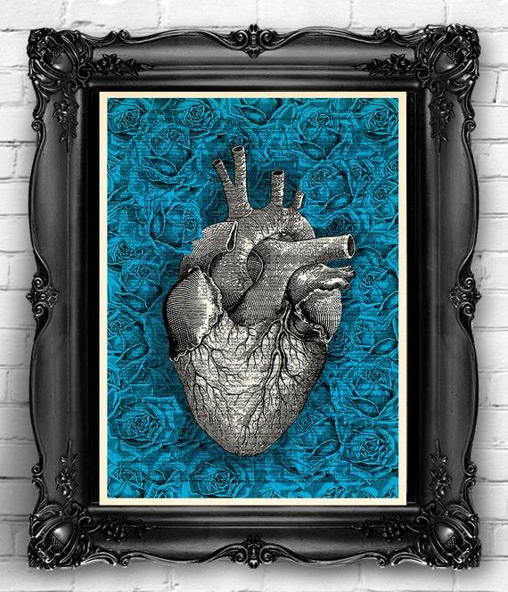 Corazón humano Anatomía arte Print Rosa rosas flores de color | Etsy