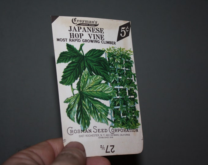Vintage 1930s Crosman Seeds Unused Seed Packet: Japanese Hop Vine; NOS RARE