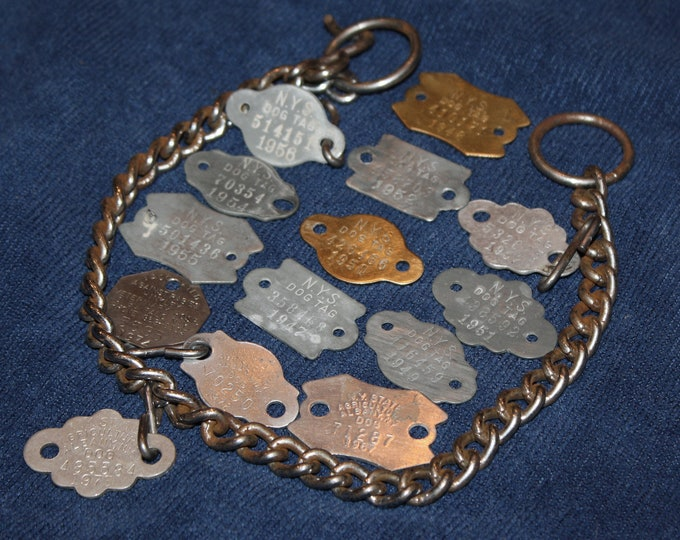 Lot of 14 Vintage Metal NYS Dog License Tags & Choker Collar