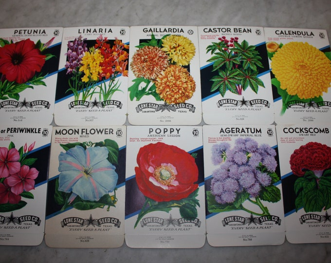 10 Diff. Vintage Unused Old Stock 10 CENT Flower Seed Packs; Lone Star Seed Co., San Antonio, Texas, Warehouse Find! NOS Authentic Packets!