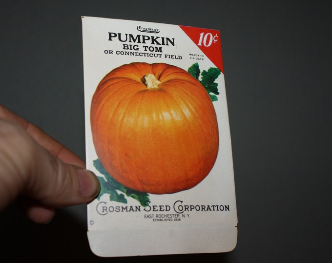 Vintage 1930s Crosman Seed Co. Unused Seed Packet: Big Tom PUMPKIN; NOS RARE
