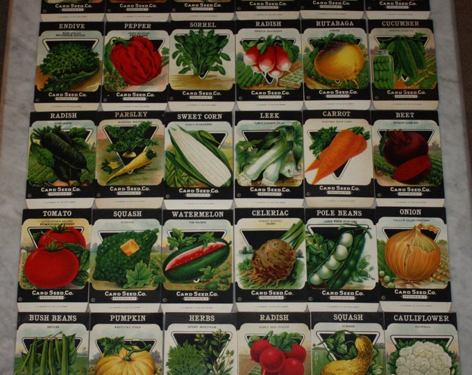 Lot B: 30 Vintage Unused 1920s Lithographed Seed Packs; Card Seed Co., Fredonia NY Warehouse Find!