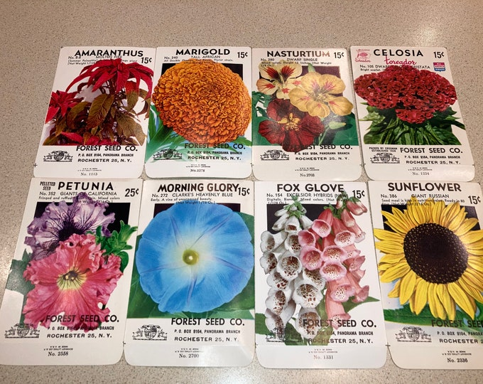 Set of 8 Vintage Flower Seed Packs from Forest Seed Co., Rochester NY; Unused Old Stock; Warehouse Find! NOS 1950s Authentic Packets!