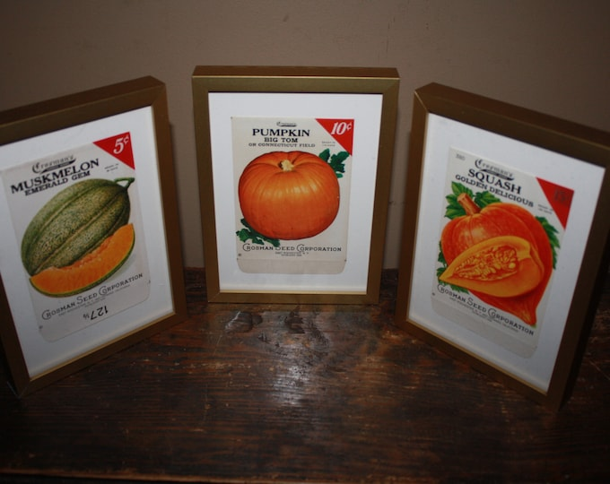 Set of 3 Framed Vintage 1930s Lithograph Seed Packets, Crosman Seed Co., East Rochester NY