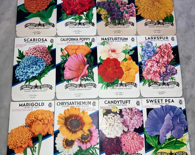 12 Diff. Vintage Unused Old Stock 10 CENT Flower Seed Packs; Lone Star Seed Co., San Antonio, Texas, Warehouse Find! NOS Authentic Packets!
