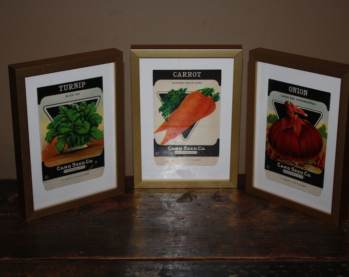 Set of 3 Framed Vintage 1930s Lithograph Seed Packets, Card Seed Co., Fredonia NY