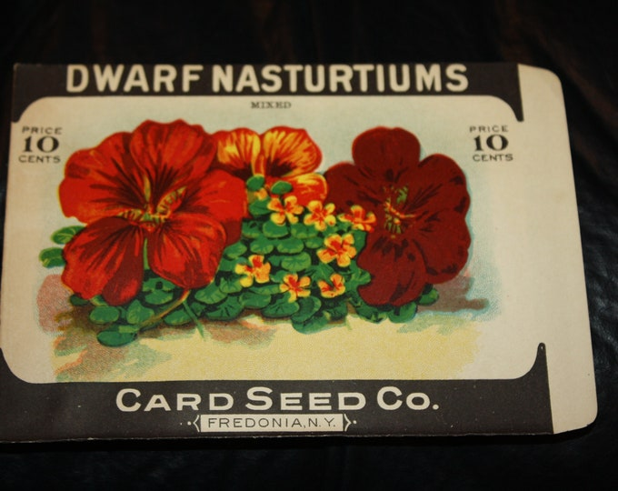 Vintage Litho. Flower Seed Packet: DWARF NASTURTIUMS; Card Seed Co. Fredonia, NY; Old Stock, Never Used!