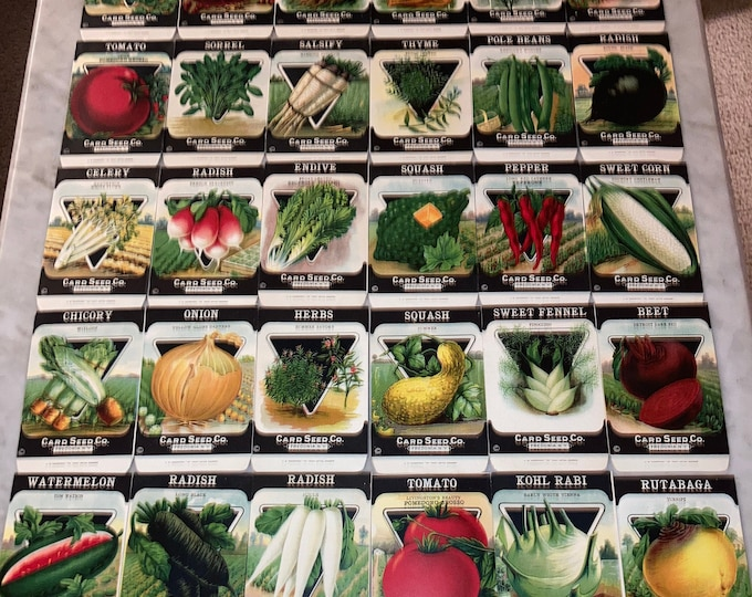 30 Vintage Unused 1920s Lithographed Seed Packs; Card Seed Co., Fredonia NY Warehouse Find! Old Authentic Packets!