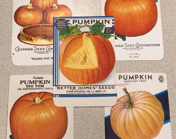 Collection of 5 Different Vintage Pumpkin Seed Packets; NOS, Never Used, Old Stock, Halloween Autumn Special!