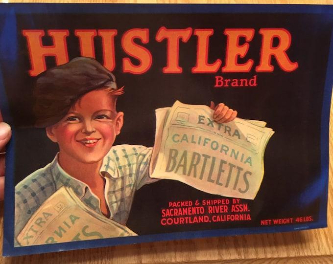 Vintage Hustler Brand California Bartlett Pears Label: Unused 1930s Wooden Fruit Crate Label