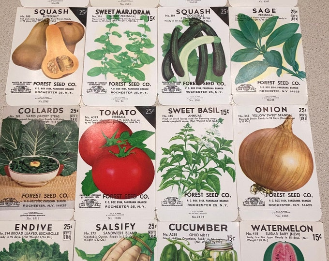 16 Vintage Fruit Vegetable & Herb Seed Packets: Forest Seed Co., Rochester NY; Unused Old Stock; Warehouse Find! NOS Authentic Packs