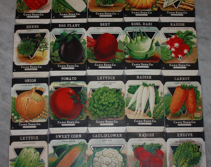 Lot of 20 Vintage Unused 1920s Lithographed Seed Packs; Card Seed Co., Fredonia NY Warehouse Find! Old Authentic Packets!