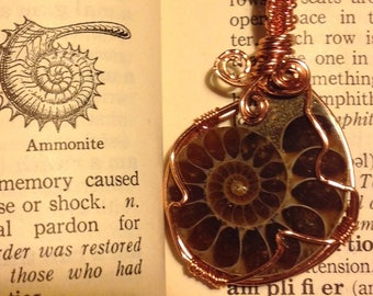 Ammonite fossil wrapped in copper reversible necklace with three small swirls