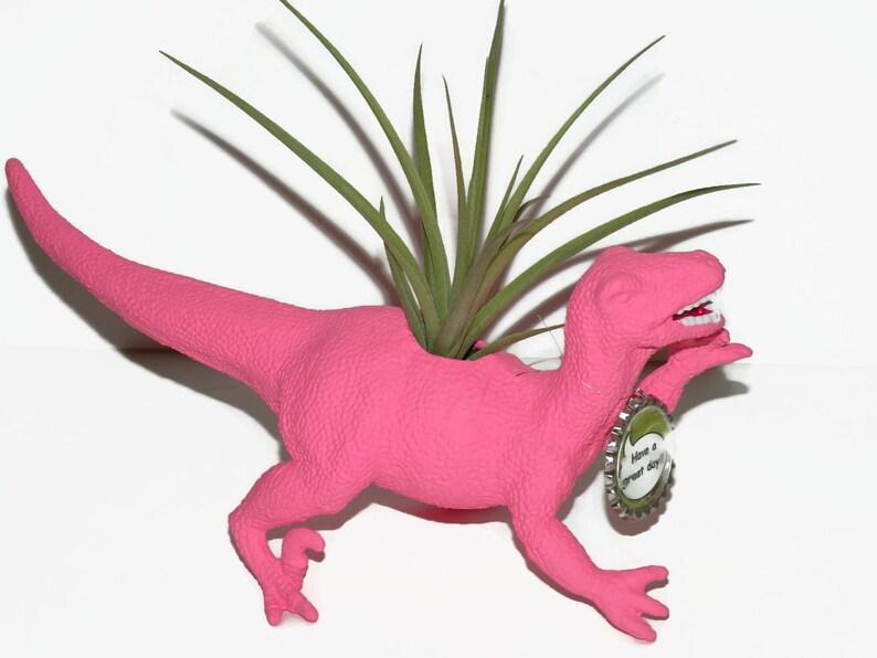 Diana the hot pink dinosaur planter including air plant.