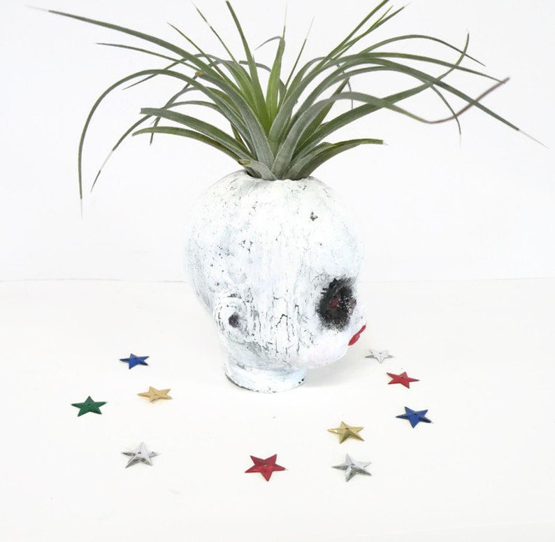 Hand painted  little porcelain doll head planter with large air plant Something different for Halloween.