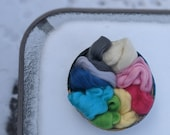 DMFibers Bright Color Sampler - Corriedale Top