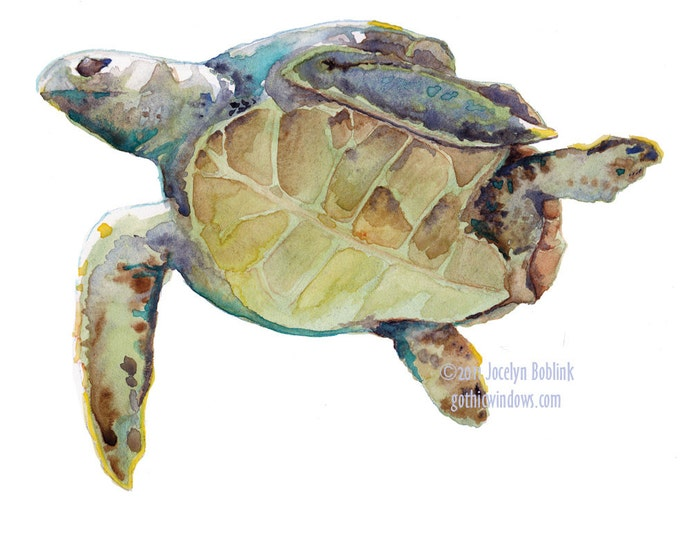 Featured listing image: Green Sea Turtle, giclee print from original watercolor painting, 8x10