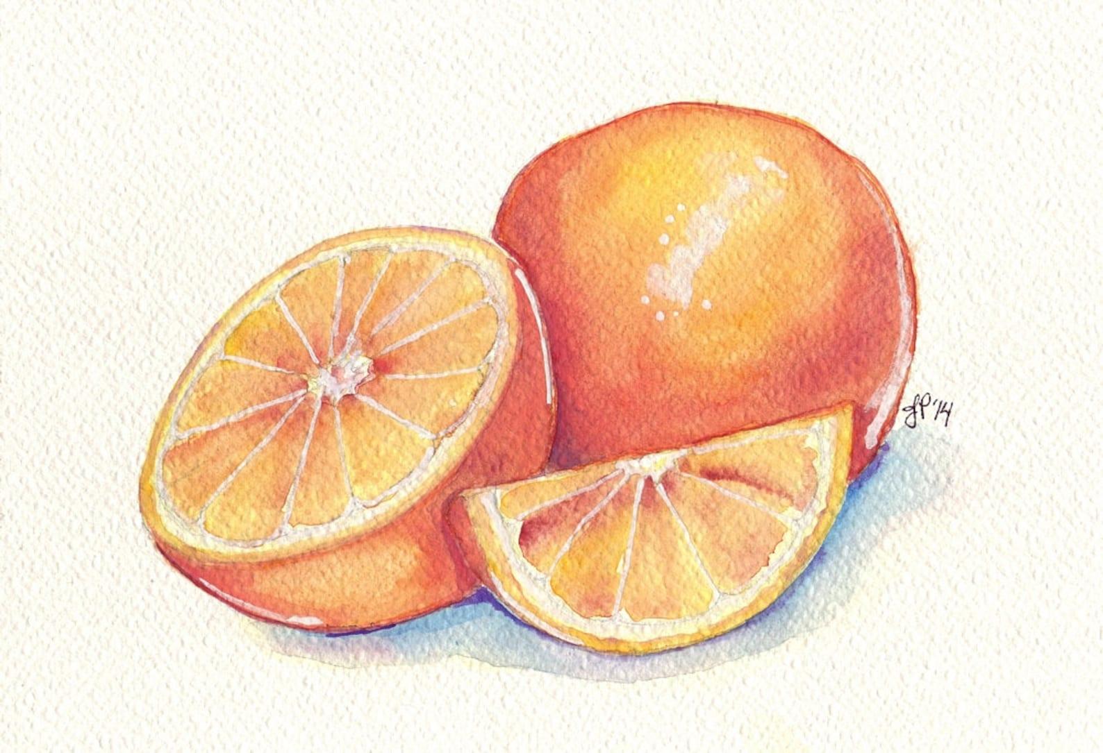 Картинки дольки фруктов для срисовки