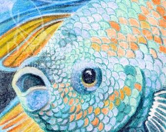 DIGITAL DOWNLOAD - Crayon Blue Betta