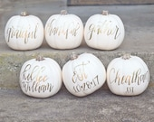 Fall Pumpkins / White Pumpkin Decor / PREORDER / Give Thanks / Calligraphy Pumpkin / Halloween Pumpkin / Personalized Pumpkin : PREORDER!