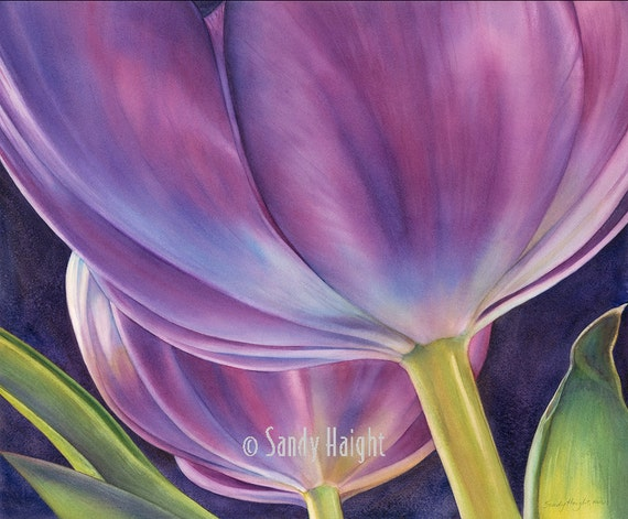 Framed Giclee Print of watercolor painting-Tulip, purple, flowers, floral, botanical, gift, garden, spring, wall art, home decor, watercolor