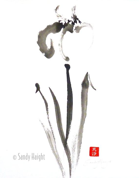 Original Sumi Painting, Lively Iris, unframed, brush & ink, black, line, flower, Asian, gift, art, wall, decor. rice paper, garden, spring