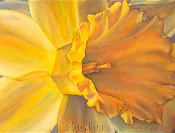 Original Framed Watercolor painting, daffodil, art, yellow, flower, gold, floral, spring, gift, garden, gardener, home decor, wall art, 2D
