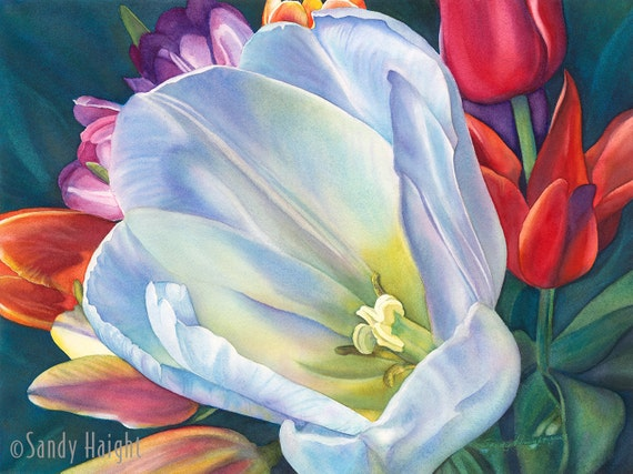 Original Framed Watercolor Painting, white tulip, bouquet, flower, floral, close up, pink, wall art, decor, large, sensuous, garden, spring
