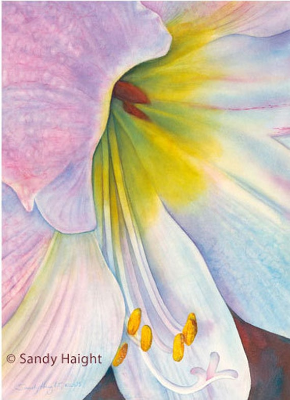 Original Watercolor Painting, framed, amaryllis, flower, floral, pink, yellow, holiday, abstract, gift, garden, wall art, home decor, macro