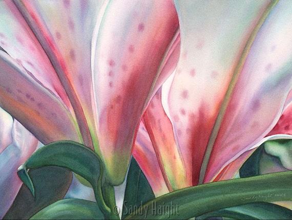 Matted Giclee of Watercolor Painting, Stargazer lilies, art, pink, flower, floral, botanical, garden, gift, unframed, wall art, home decor,