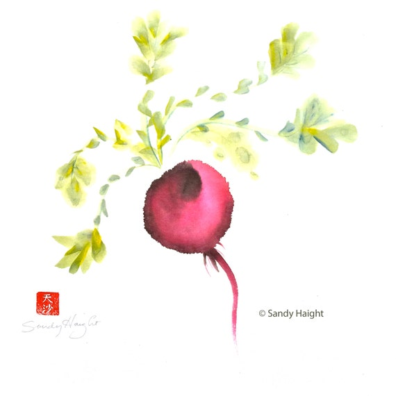 Original Sumi Painting, Radish, color, vegetable, plant, edible, wall art, home decor, unframed, food, root, cook, gift, earth, kitchen, art