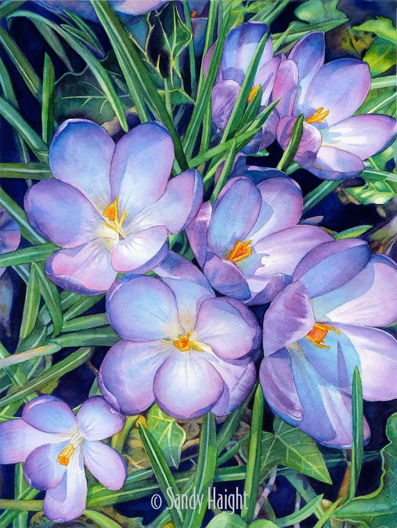 Giclee Print of watercolor painting, large, archival, unframed, flower, crocuses, floral, purple, blue, spring, wall art, home decor, gift