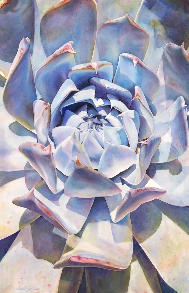 succulent blue echeveria interior design decor bloom flower,plant wall art Giclee print of watercolor painting garden unframed art