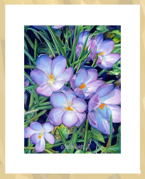 Original watercolor painting, Crocuses, art, spring, earth, flower, gift, gardener, botany, gardening, purple, green, realism, frame, decor