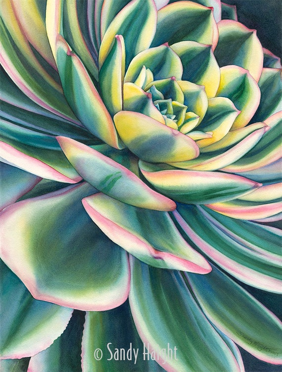 Original framed painting, art, watercolor, large art, succulent, floral, flower, plant, botanical, garden, wall art, decor, gift, close up