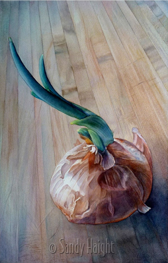 Original Watercolor painting, Sprouting Onion, art, vegetable, kitchen, food, cook, garden, butcher block, home decor, wall art, unframed