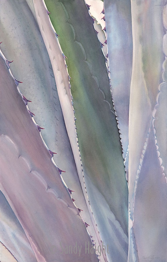 Original framed watercolor painting, succulent, agave, close up, art, thorns, neutral color, vertical, large art, decor, wall art, desert