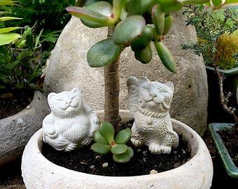 2 Mini Lucky Zen Cat Buddha and Maneki Neko Bonsai Statues