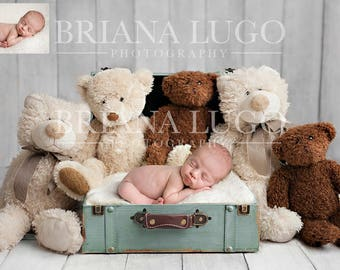 Digital newborn bear suitcase prop