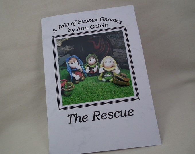 A Tale of Sussex Gnomes 'The Rescue' by Ann Galvin  A5 book featuring original characters.