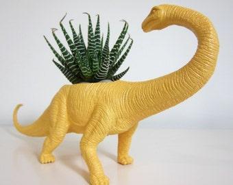 Beatrice the Apatosaurus Planter & Succulent