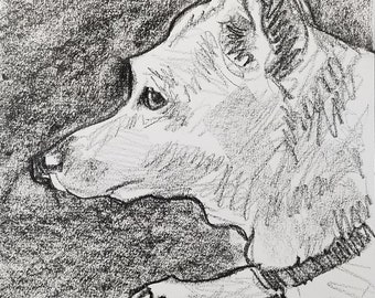 Chuck, 9x12 inches crayon on paper by Kenney Mencher