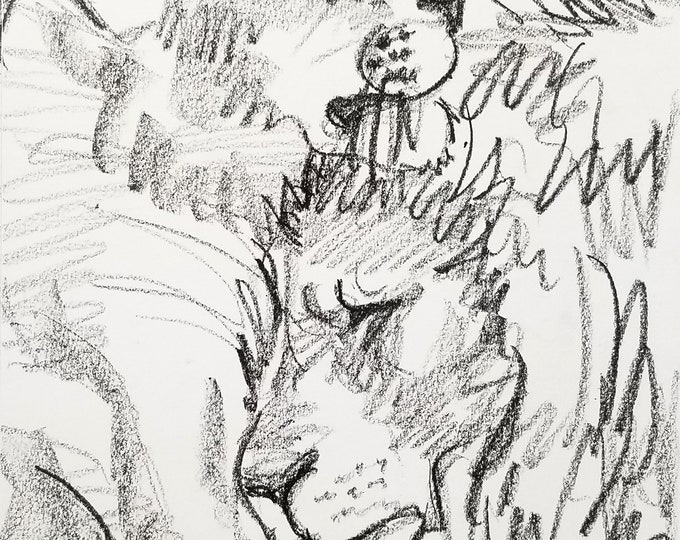 Lions Cuddling, 9x12 inches crayon on paper by Kenney Mencher