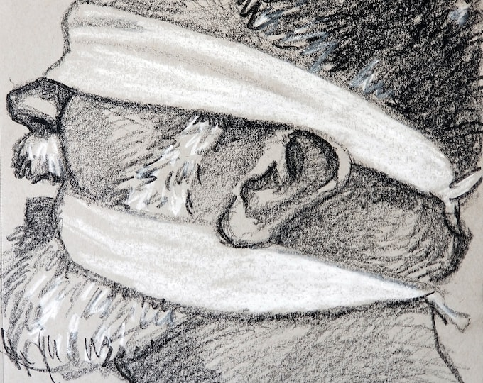 Plaything Bear in Profile, 12x9 inches, crayon gray paper by Kenney Mencher